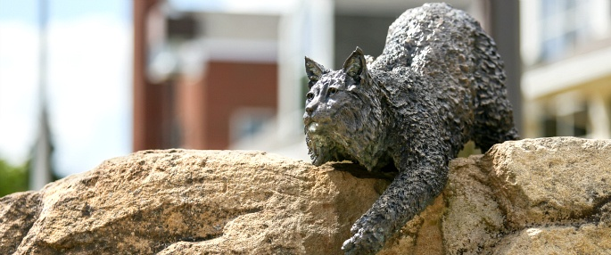Campus mascot statue, Bruiser the Bobcat
